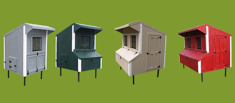 Traditional Chicken Coops